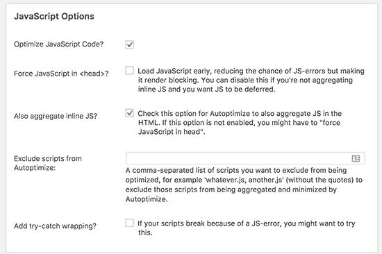 高级JavaScript选项