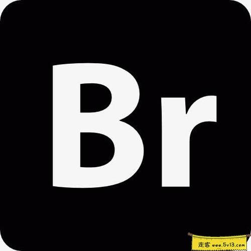 Adobe Bridge 2021 Mac中文破解版